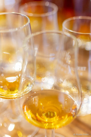 verres Cognac